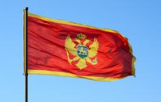 перевозка грузов из Черногории в РФ
